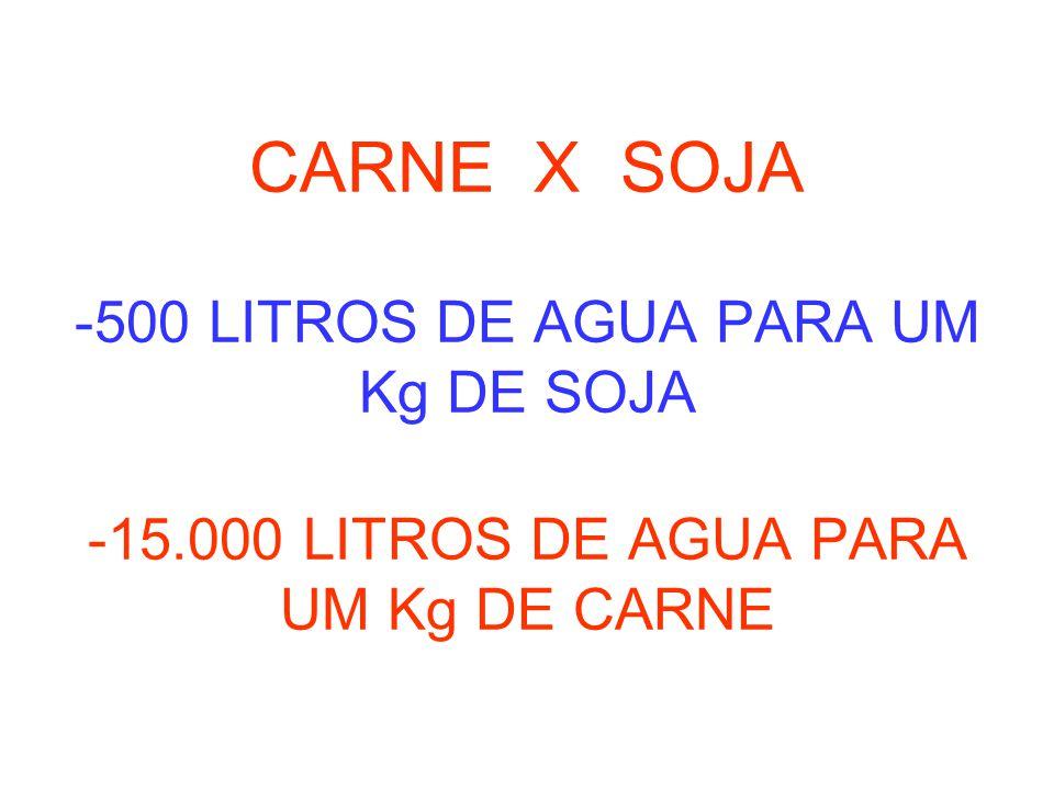 CARNE X SOJA -500 LITROS DE AGUA PARA UM Kg DE SOJA -15