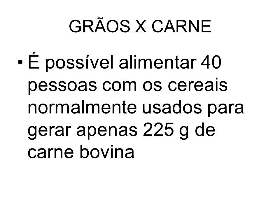 GRÃOS X CARNE É possível alimentar 40 pessoas com os cereais normalmente usados para gerar apenas 225 g de carne bovina.