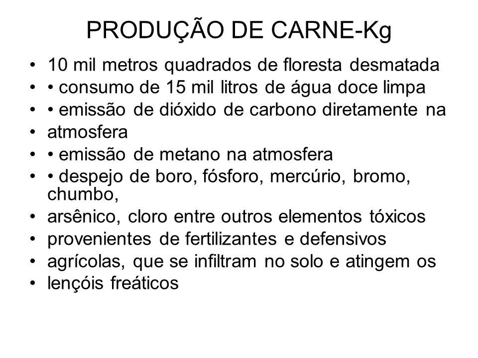 PRODUÇÃO DE CARNE-Kg 10 mil metros quadrados de floresta desmatada