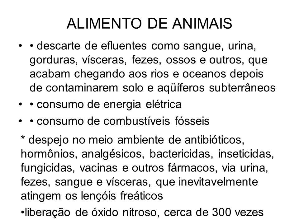 ALIMENTO DE ANIMAIS