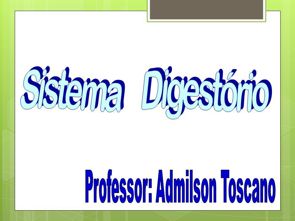 Professor: Admilson Toscano