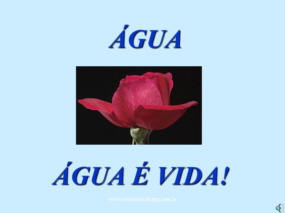 ÁGUA ÁGUA É VIDA! www.consciencial.hpg.com.br