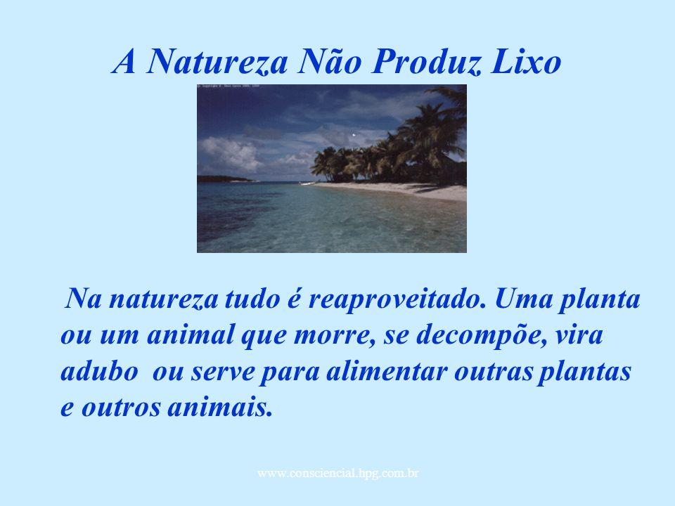 A Natureza Não Produz Lixo