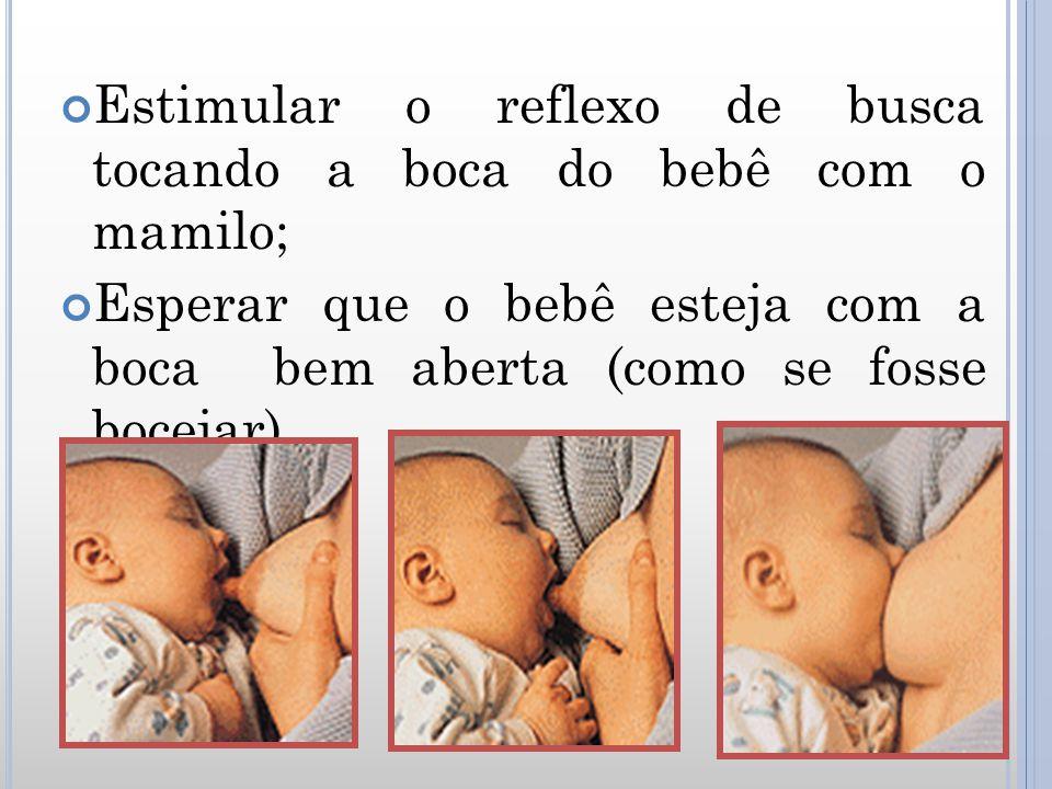 Estimular o reflexo de busca tocando a boca do bebê com o mamilo;