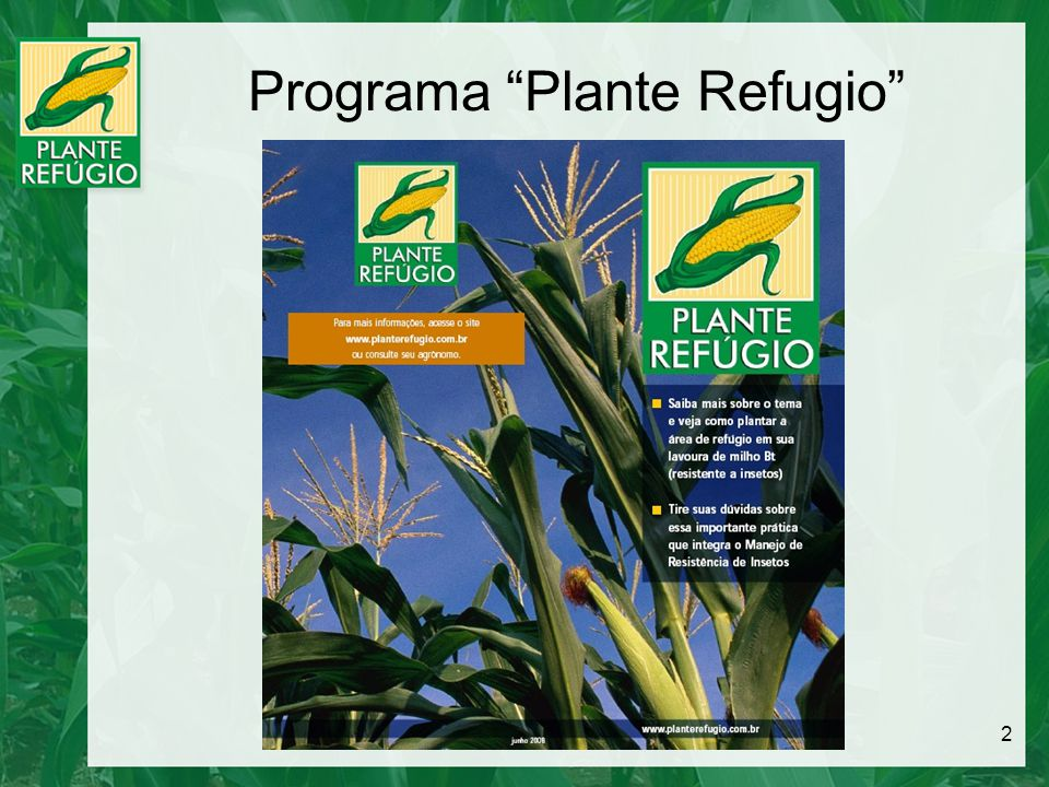 Programa Plante Refugio