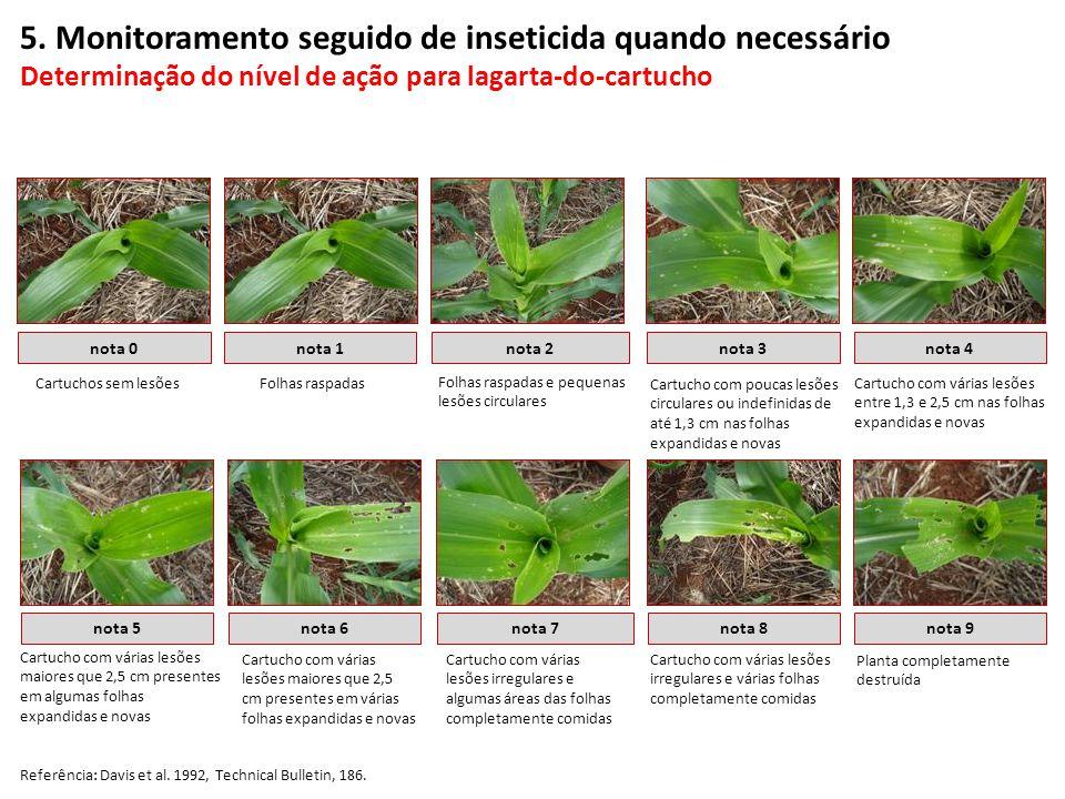 5. Monitoramento seguido de inseticida quando necessário Determinação do nível de ação para lagarta-do-cartucho