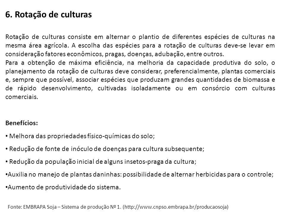 6. Rotação de culturas