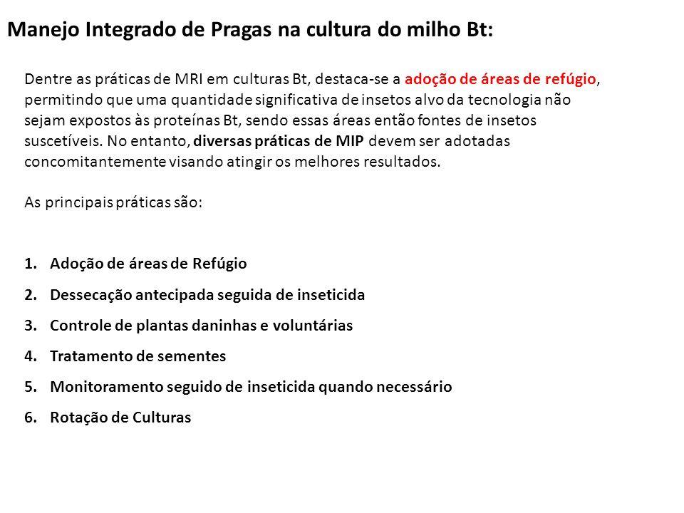 Manejo Integrado de Pragas na cultura do milho Bt: