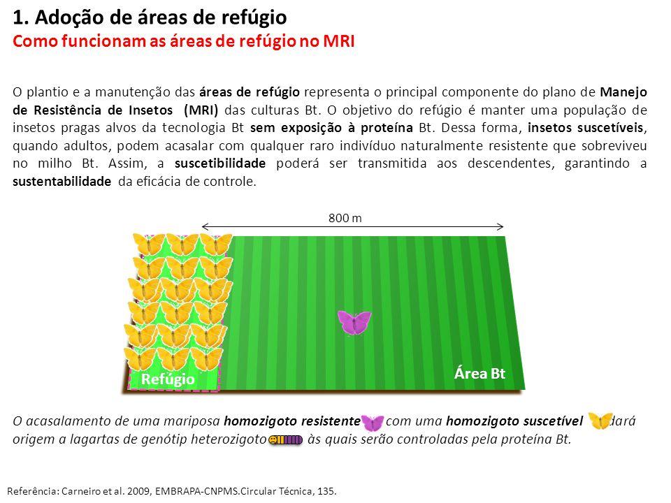 1. Adoção de áreas de refúgio Como funcionam as áreas de refúgio no MRI