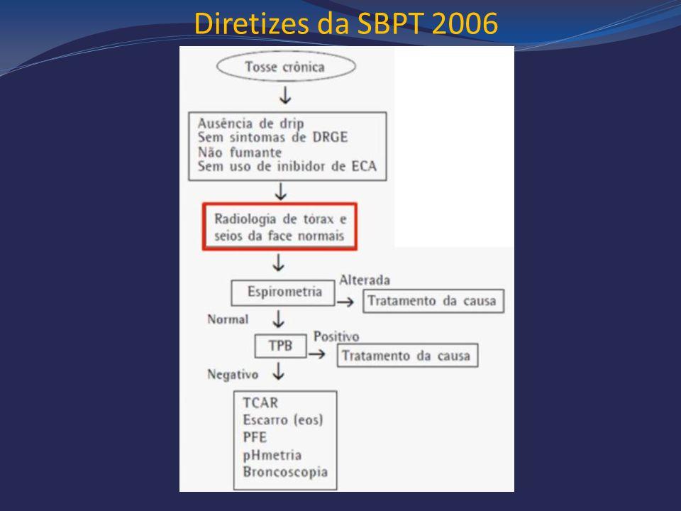 Diretizes da SBPT 2006