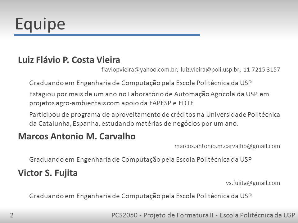 Equipe Luiz Flávio P. Costa Vieira