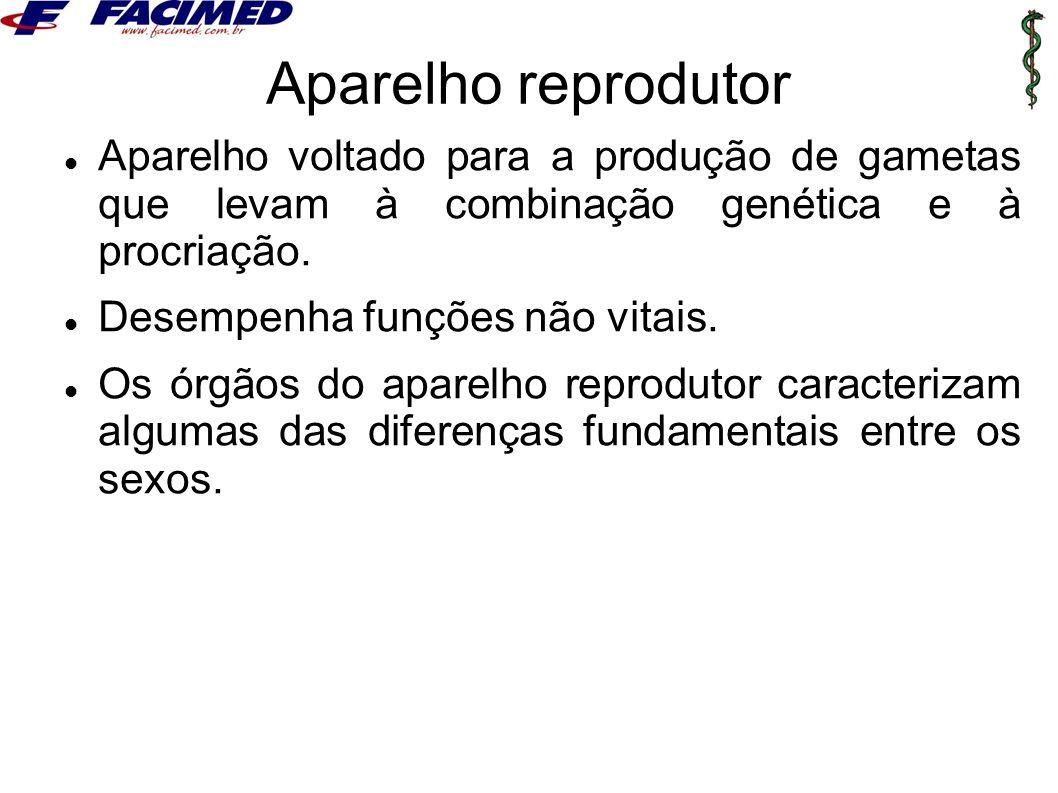 Aparelho reprodutor Aparelho voltado para a produção de gametas que levam à combinação genética e à procriação.