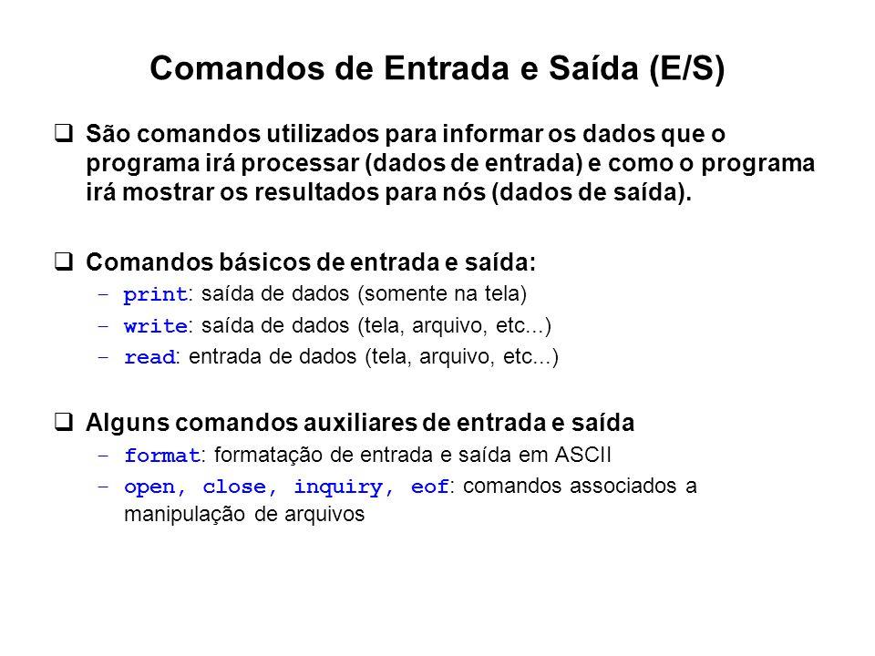Comandos de Entrada e Saída (E/S)