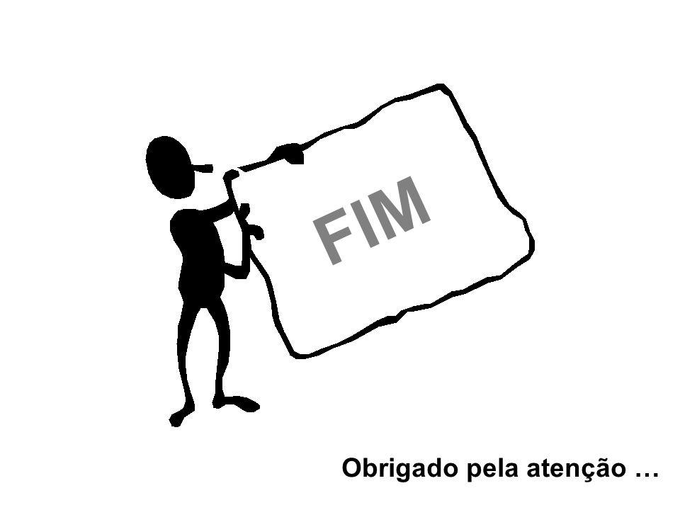 FIM Obrigado pela atenção …
