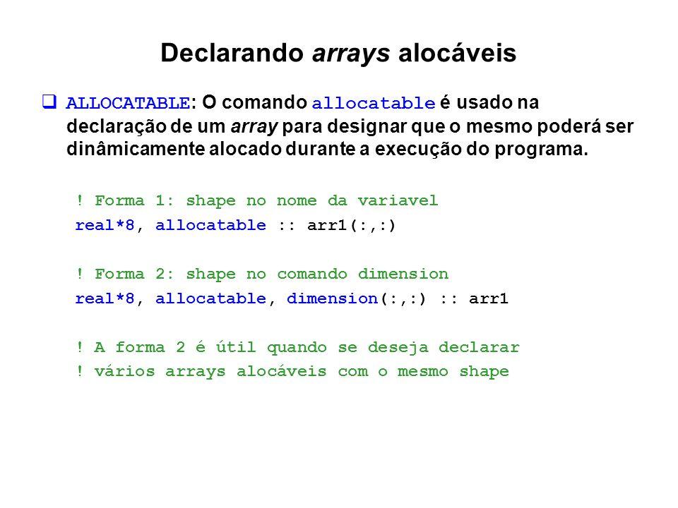 Declarando arrays alocáveis
