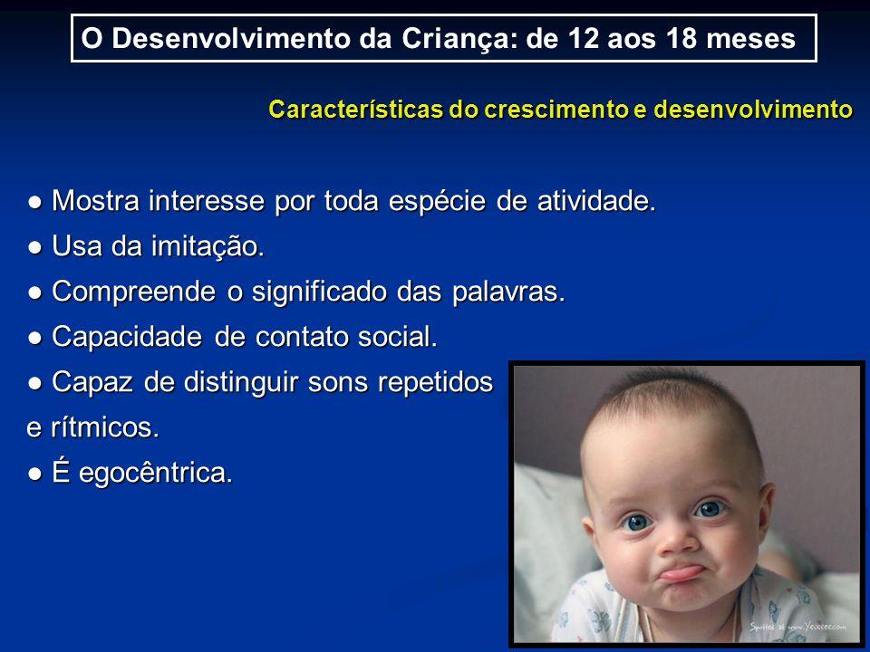 O Desenvolvimento da Criança: de 12 aos 18 meses