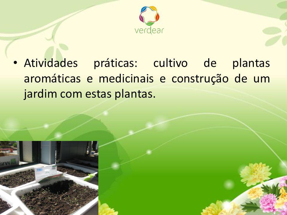 Atividades práticas: cultivo de plantas aromáticas e medicinais e construção de um jardim com estas plantas.