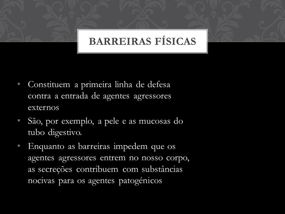 BARREIRAS FÍSICAS Constituem a primeira linha de defesa contra a entrada de agentes agressores externos.