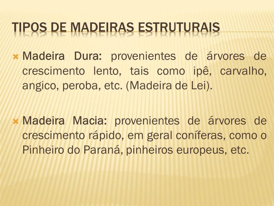 TIPOS DE MADEIRAS ESTRUTURAIS