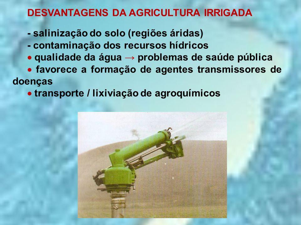 DESVANTAGENS DA AGRICULTURA IRRIGADA