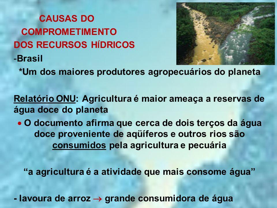 a agricultura é a atividade que mais consome água