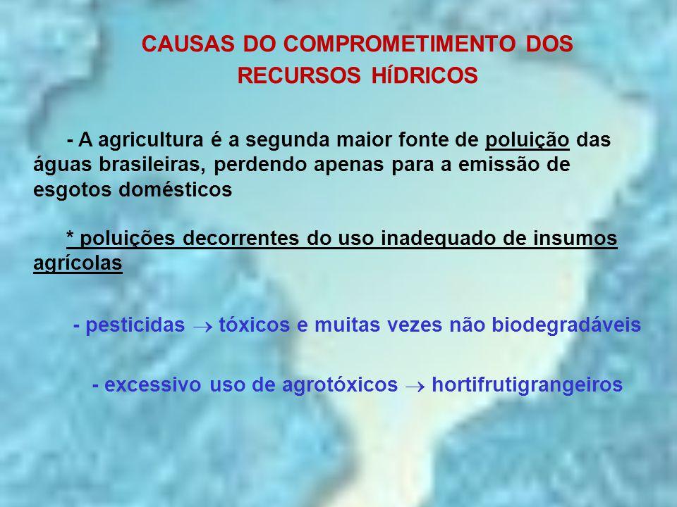 CAUSAS DO COMPROMETIMENTO DOS RECURSOS HÍDRICOS