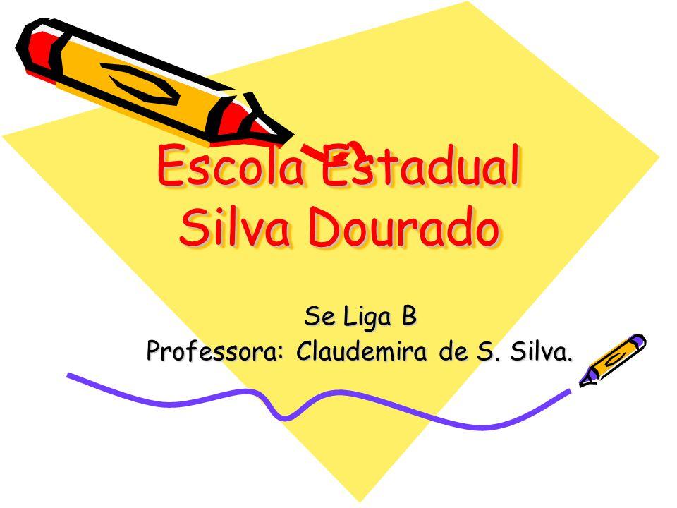 Escola Estadual Silva Dourado