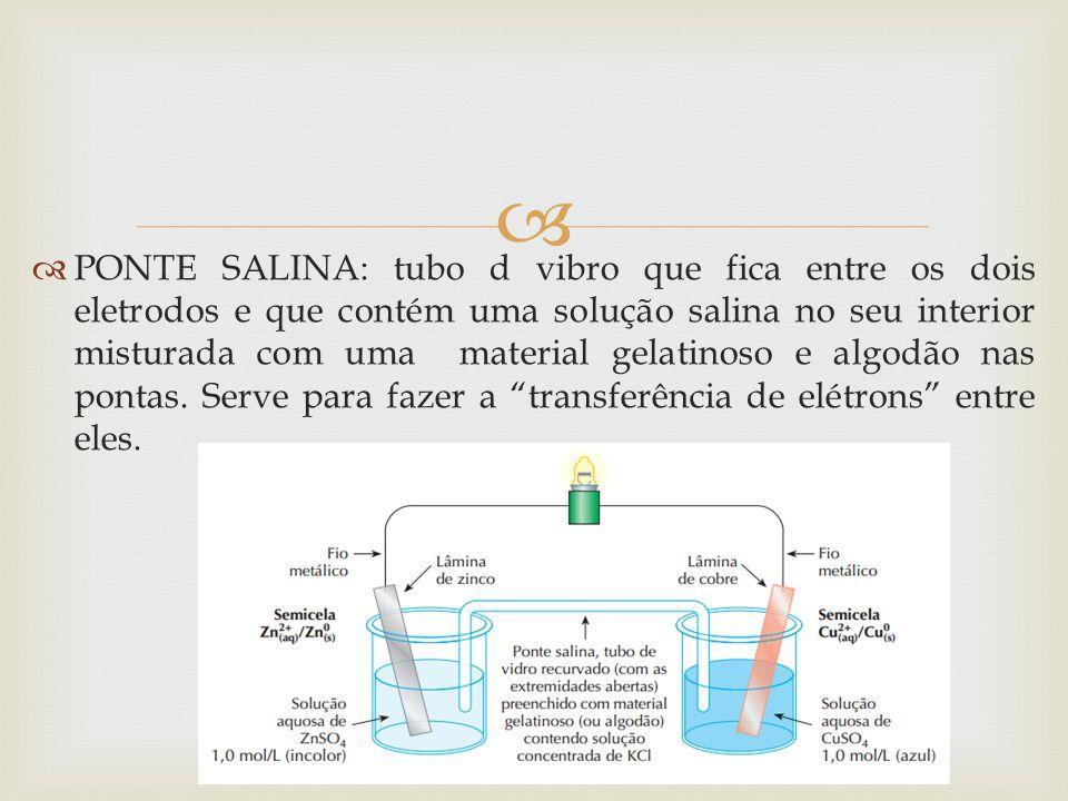 PONTE SALINA: tubo d vibro que fica entre os dois eletrodos e que contém uma solução salina no seu interior misturada com uma material gelatinoso e algodão nas pontas.