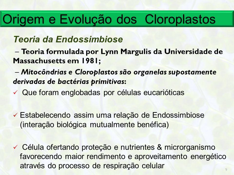 Origem e Evolução dos Cloroplastos