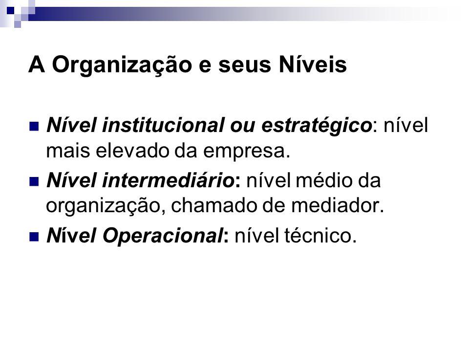 A Organização e seus Níveis