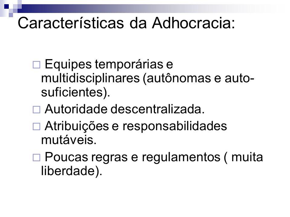 Características da Adhocracia: