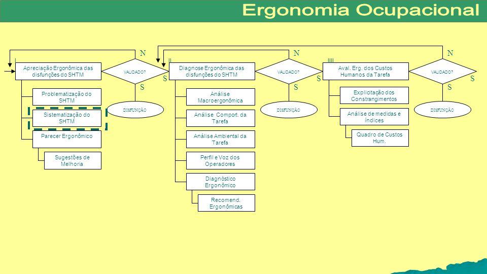 N S IIII II I Diagnose Ergonômica das disfunções do SHTM