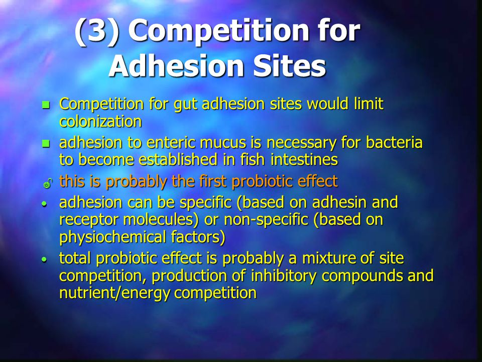 (3) Competition for Adhesion Sites