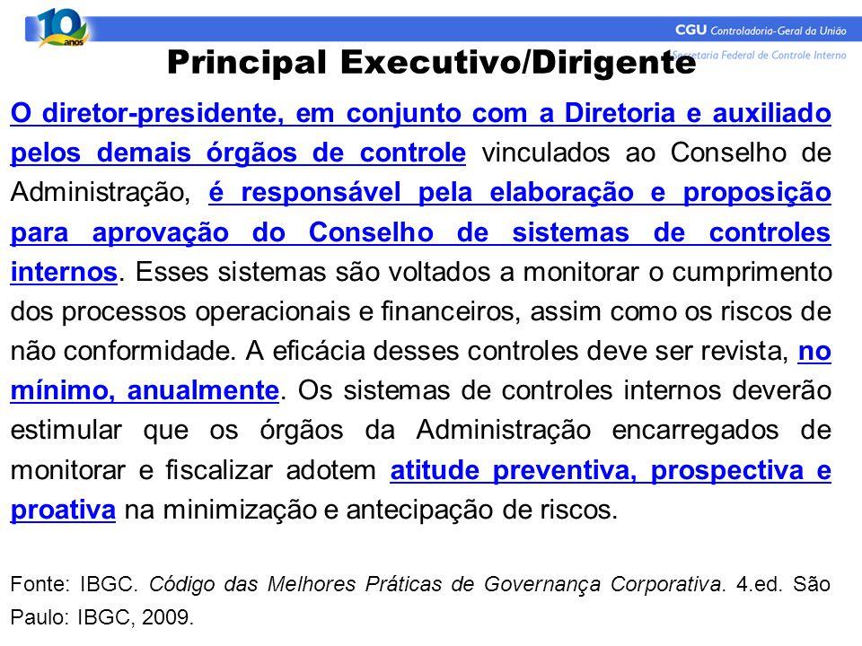 Principal Executivo/Dirigente