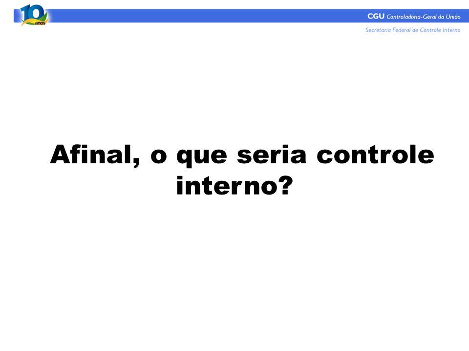 Afinal, o que seria controle interno