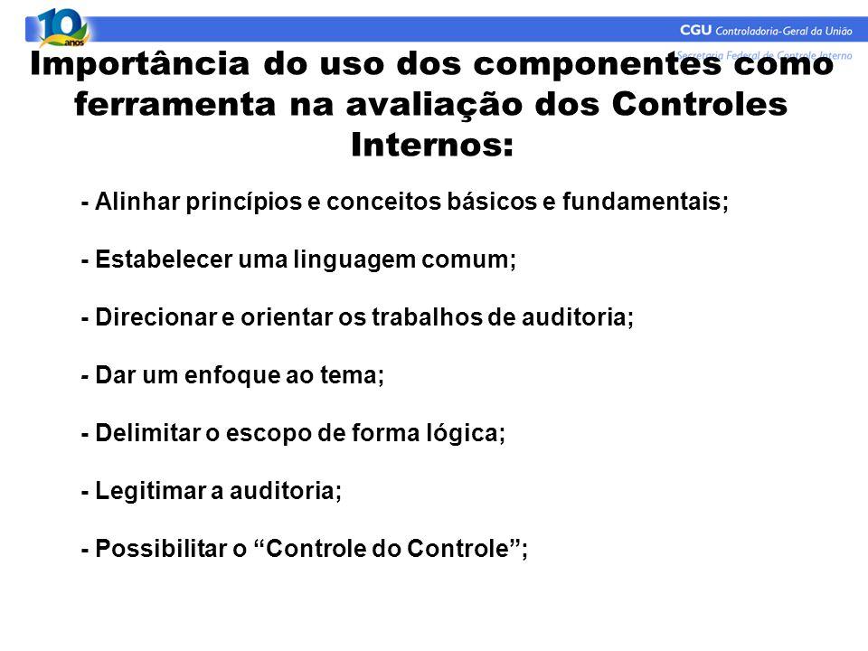 Importância do uso dos componentes como ferramenta na avaliação dos Controles Internos: