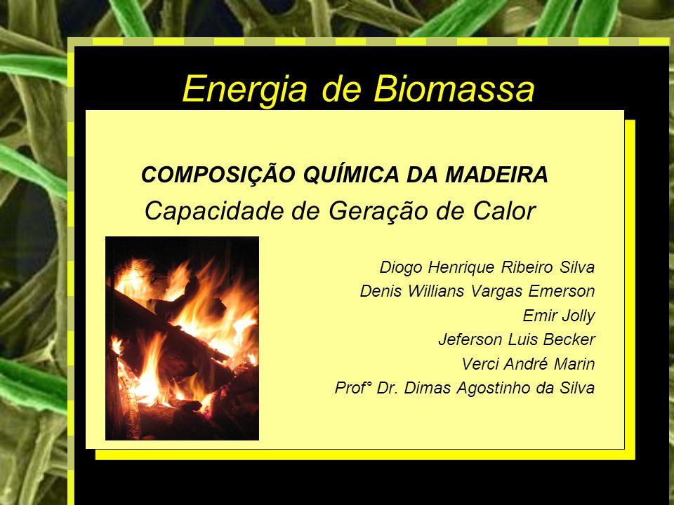 Energia de Biomassa Capacidade de Geração de Calor