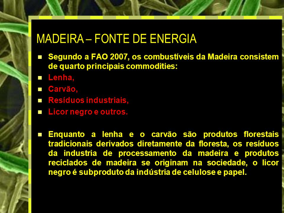 MADEIRA – FONTE DE ENERGIA