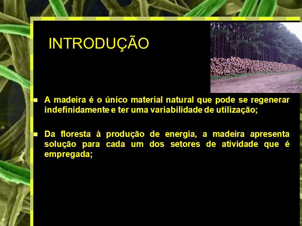 INTRODUÇÃO A madeira é o único material natural que pode se regenerar indefinidamente e ter uma variabilidade de utilização;