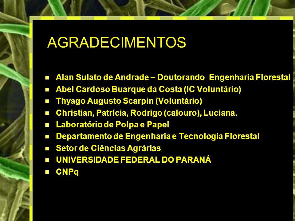 AGRADECIMENTOS Alan Sulato de Andrade – Doutorando Engenharia Florestal. Abel Cardoso Buarque da Costa (IC Voluntário)