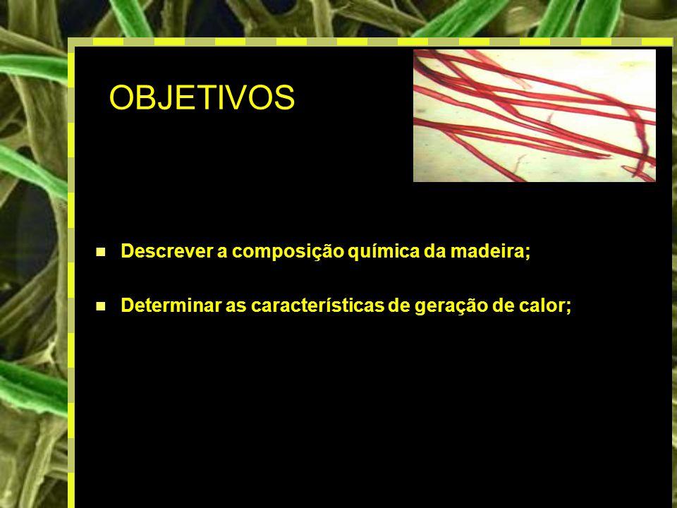 OBJETIVOS Descrever a composição química da madeira;