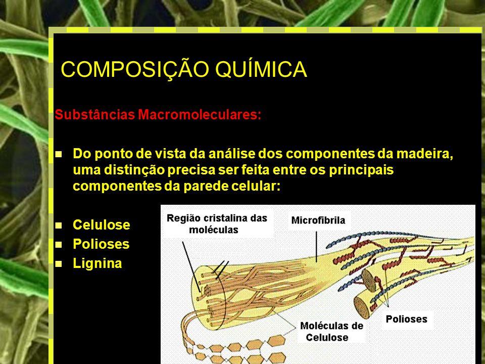 COMPOSIÇÃO QUÍMICA Substâncias Macromoleculares: