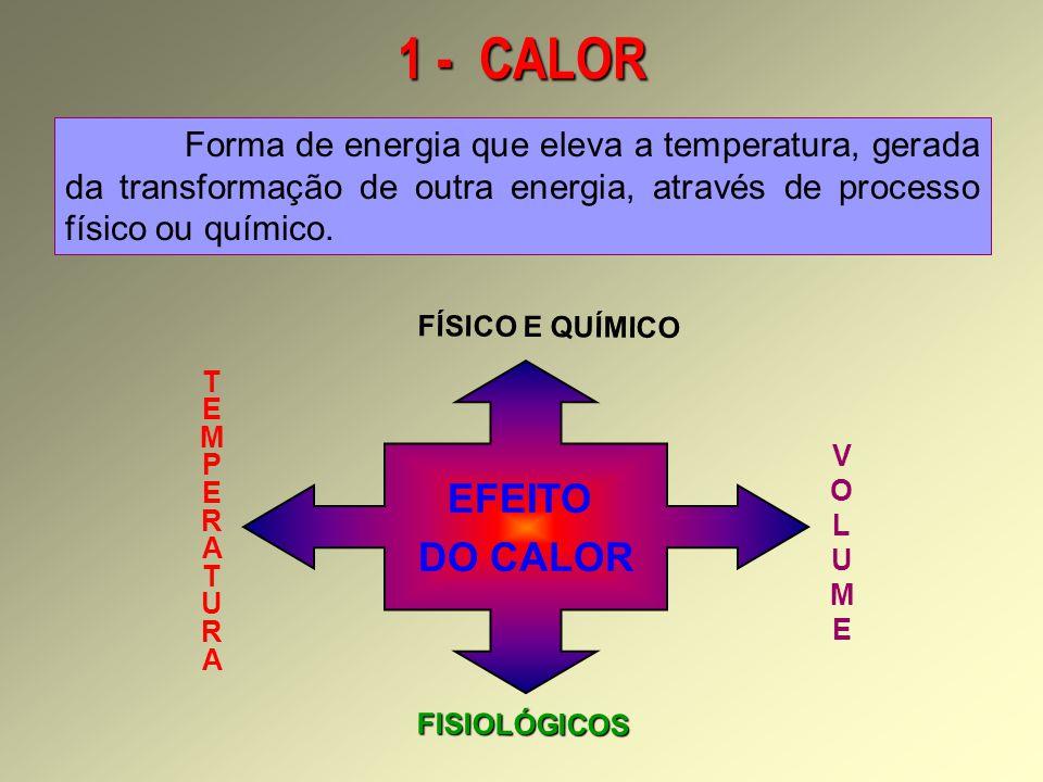1 - CALOR Forma de energia que eleva a temperatura, gerada da transformação de outra energia, através de processo físico ou químico.