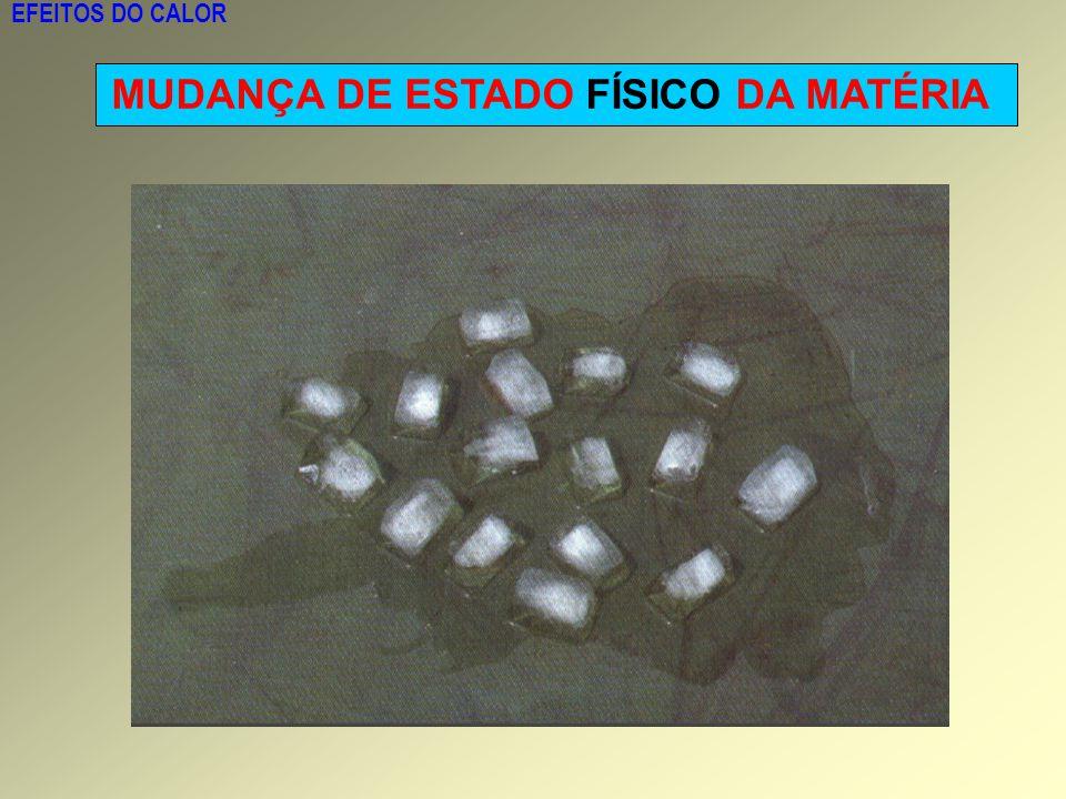 MUDANÇA DE ESTADO FÍSICO DA MATÉRIA