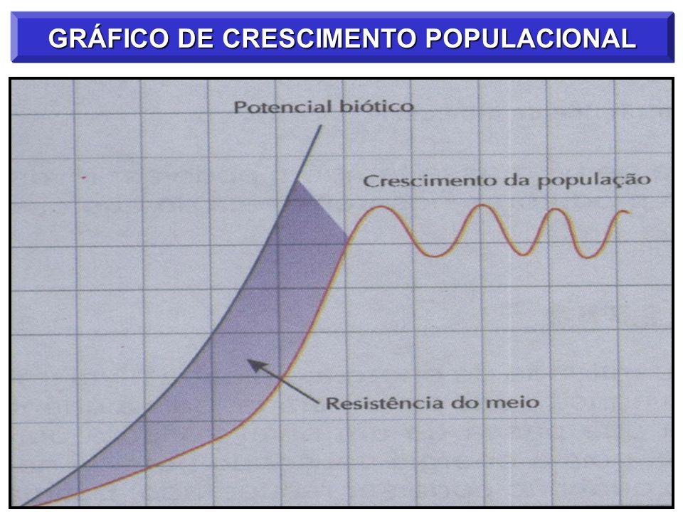 GRÁFICO DE CRESCIMENTO POPULACIONAL