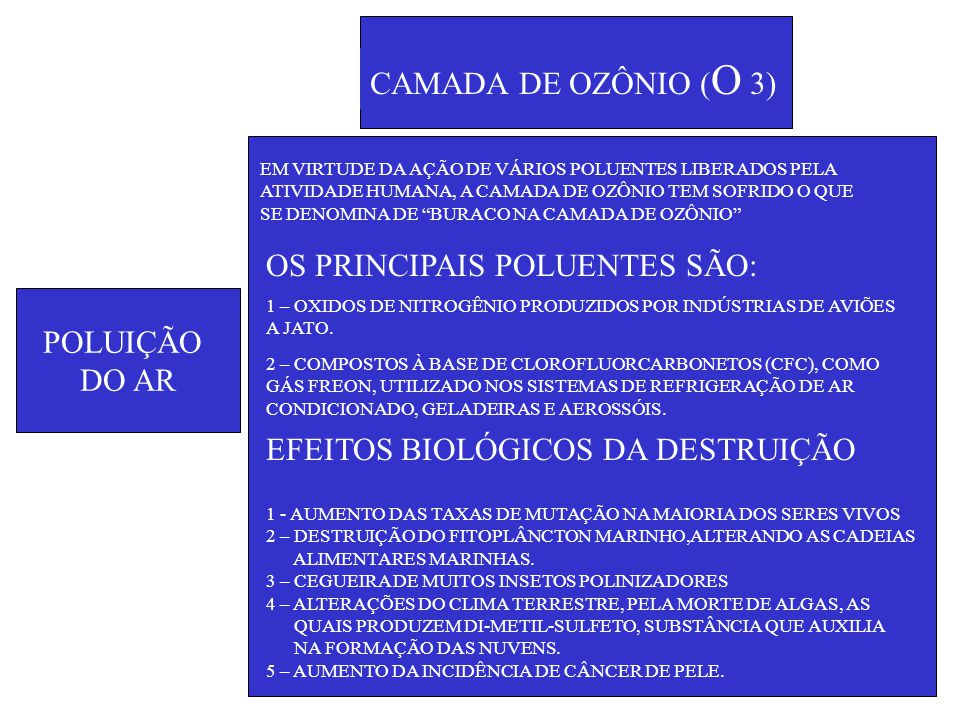 OS PRINCIPAIS POLUENTES SÃO: