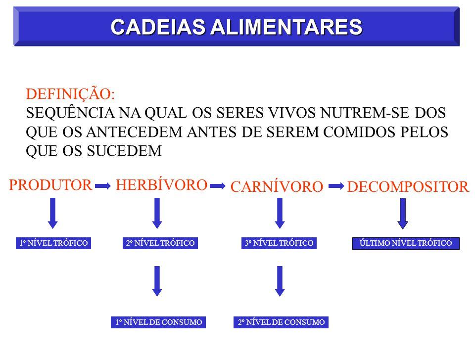 CADEIAS ALIMENTARES DEFINIÇÃO: