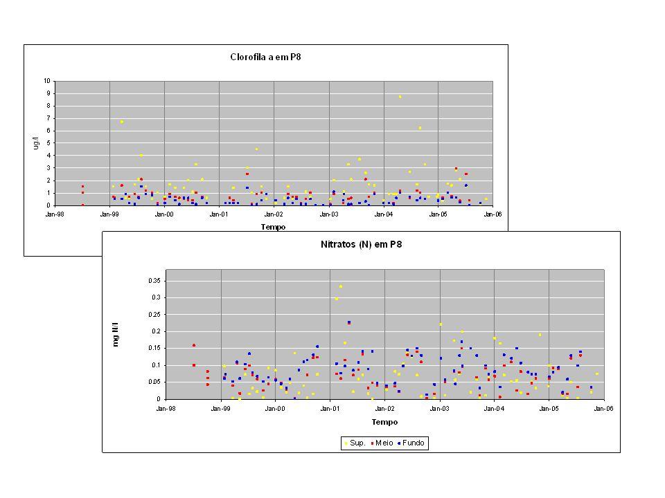 Este slide mostra séries temporais de nitrato e de clorofila na vertical do difusor. A figura mostra que os nitratos são tipicamente inferiores a 0.1 mgN/L e só ultrapassam 0.2 em períodos de muito alto caudal (inverno). Nos meses de Verão são mais elevados junto ao fundo porque têm origem no upwelling.