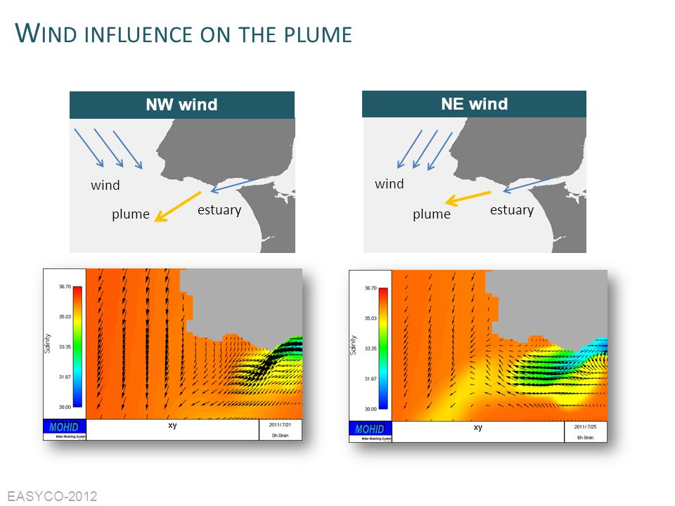Wind influence on the plume