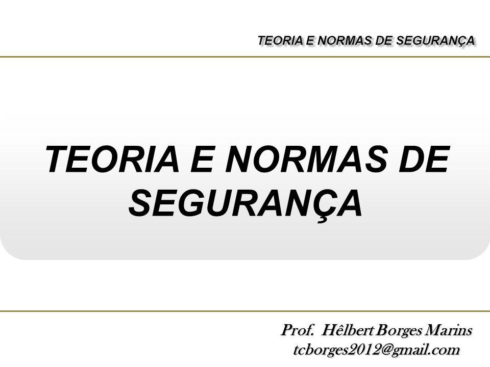 TEORIA E NORMAS DE SEGURANÇA Prof. Hêlbert Borges Marins